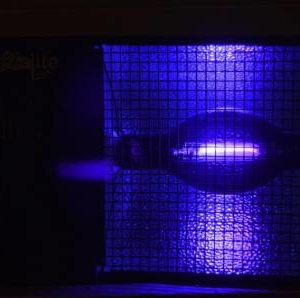 Location projecteur lumière noire- Réf :10037